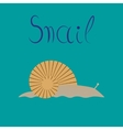 flat on background snail vector image