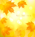 autumn background with yellow leavers vector image vector image