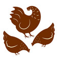rooster and two hens vector image