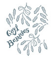 superfood goji berries vector image