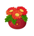 red flowers in a pot vector image