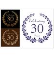 Anniversary celebration emblem vector image