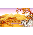 A tiger with a river at the back vector image