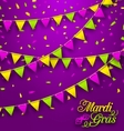 Bunting Background for Mardi Gras vector image