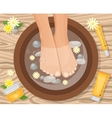 Feets In Basin Composition vector image
