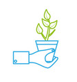 line man hand with natural plant with leaves vector image