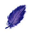 watercolor lilac feather vector image