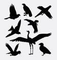 bird activity silhouette vector image