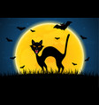 halloween growl black cat bat moon graveyard vector image