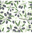 olive seamless pattern black fruits grunge leaves vector image