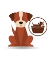veterinary dog care gromming icon vector image