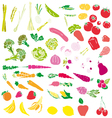 Vegetables and fruit vector image
