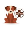 veterinary dog care clinic icon vector image