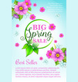 spring holiday sale flowers poster template vector image