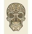 Decorative isolated human skull vector image