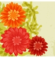 Red and orange chrysanthemums on grunge background vector image