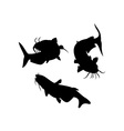 Catfish Silhouette vector image vector image