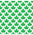 Maple leaf pattern vector image