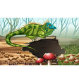 Iguana standing on the log vector image