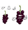 Cartoon currant berries vector image