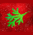 green christmas spruce branch silhouette vector image