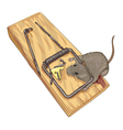 Mouse in a mousetrap vector image
