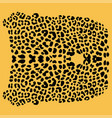 background of leopard skin pattern vector image