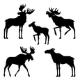 moose silhouette vector image