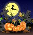Pumpkins for Halloween vector image
