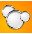 Elegant round shapes vector image