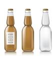 Sample of empty beer bottles vector image