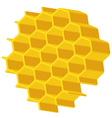Hexagonal array vector image vector image