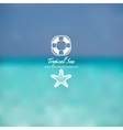 Abstract sunshine marine tropical background vector image