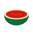 Melon vector image