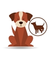 veterinary dog care dog silhouette icon vector image