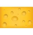 cheese texture vector image