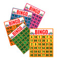 bingo colorful cards isolated vector image