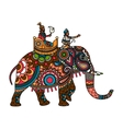 Indian maharajah on the elephant colored vector image