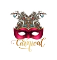 mask silhouette with ornamental floral feather and vector image