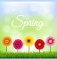 spring banner with flowers vector image