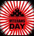 Veterans day in usa flag america folded in vector image