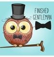 Owl in hat vector image