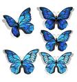 Set Blue Butterflies Morpho vector image