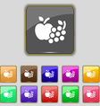 Fruits web icons sign Set with eleven colored vector image