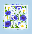 spring flowers poster vector image vector image