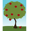 Apple tree image vector image