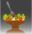 Salad bowl vector image