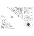Web and black poisonous spider Set Halloween vector image