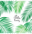 seamless background with tropical leaves vector image vector image