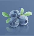 Three blueberries in modern triangulated style vector image